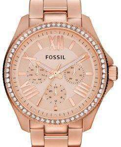 Fossil Cecile Multifunction Crystal Rose Gold-Tone AM4483 Womens Watch