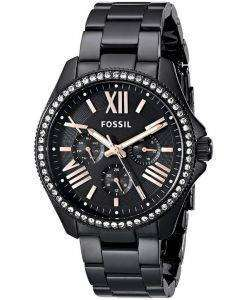 Fossil Cecile Multifunction Quartz Crystals AM4522 Womens Watch