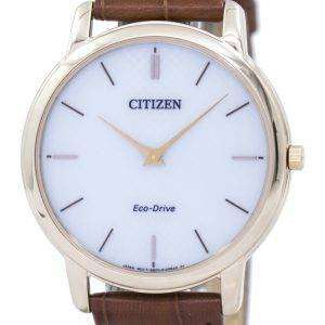 Citizen Eco-Drive AR1133-15A Men's Watch