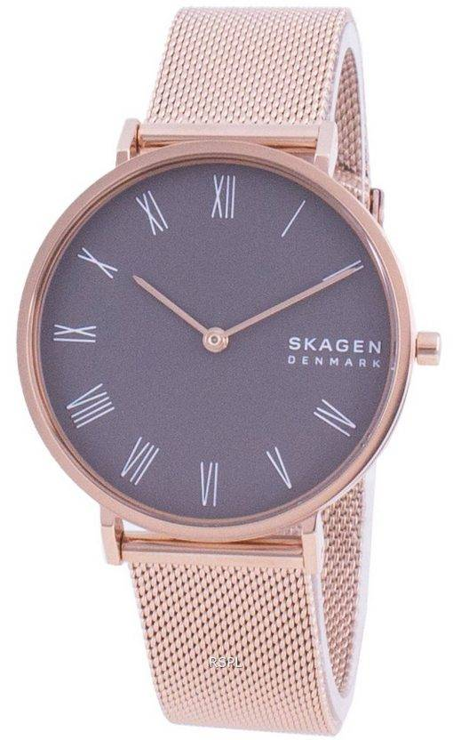 Skagen Hald SKW2813 Quartz Women's Watch