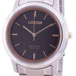 Citizen Eco-Drive Titanium FE7024-84E Women's Watch